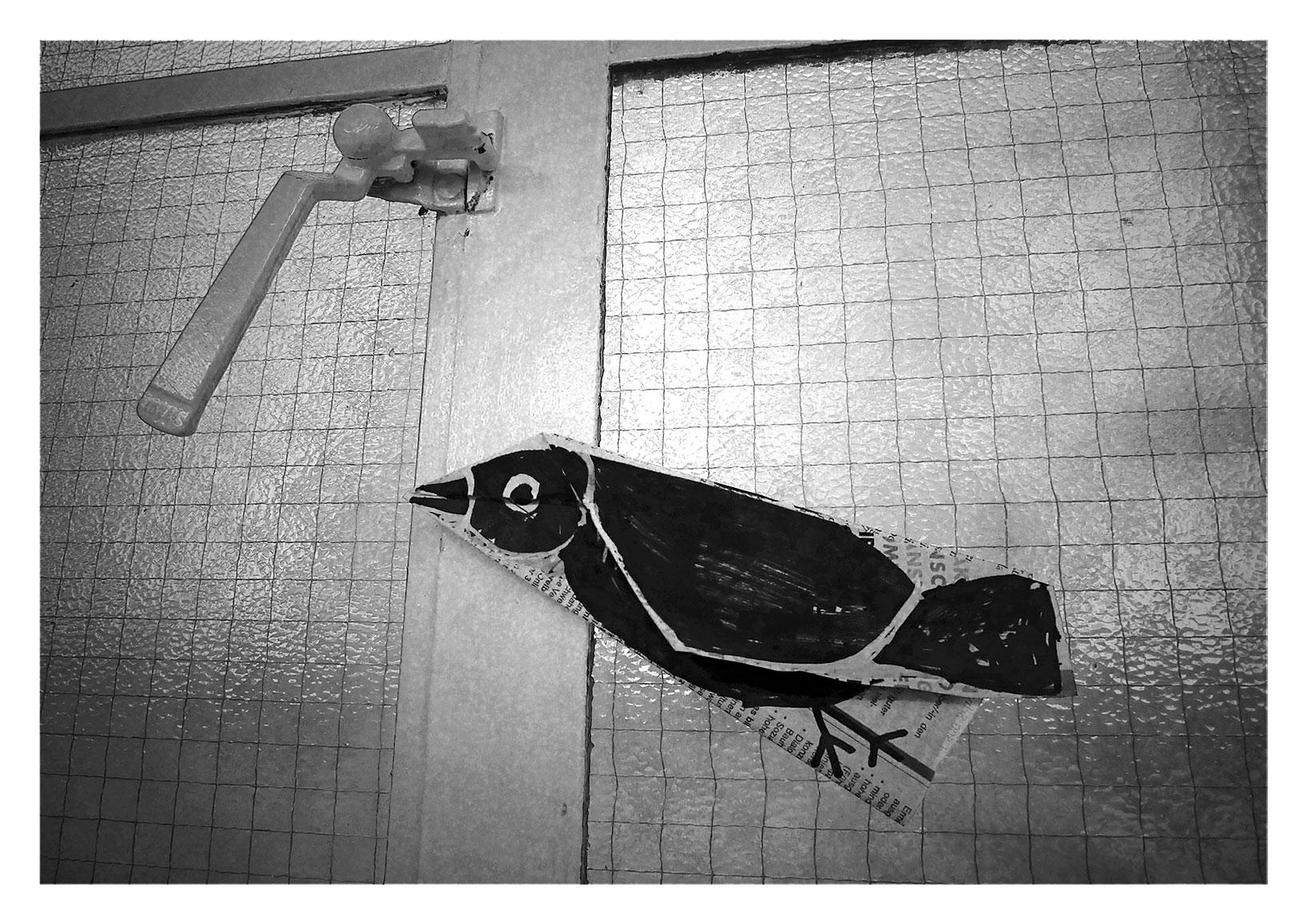 Bird4_flattened_web